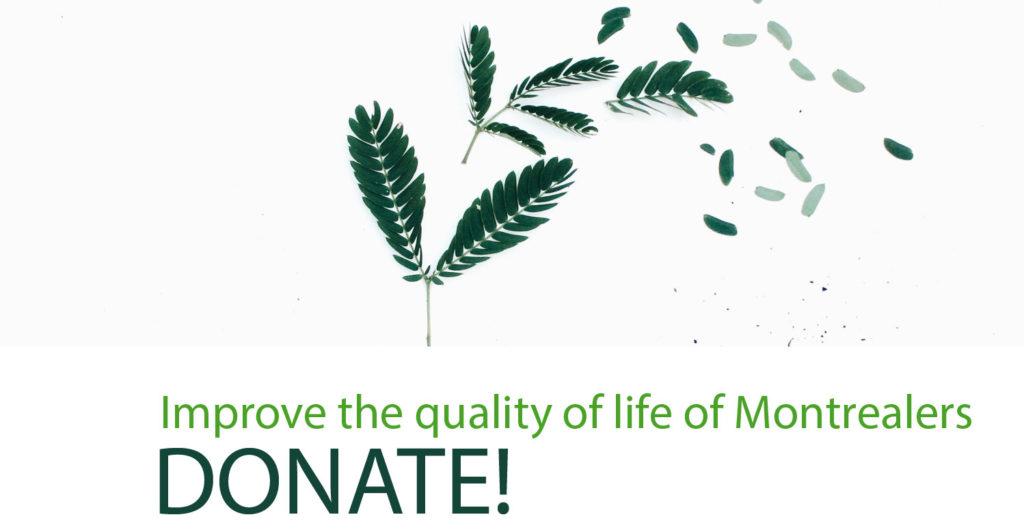Donate - Société pour l'action, l'éducation et la